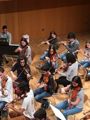 Alumnes de l'Escola Municipal de Música de la Seu d'Urgell participaran en el Concert de Primavera de la Fundació ONCA