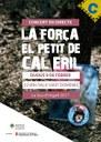 Concert de 'El Petit de Cal Eril' a la Seu d'Urgell amb 'La força', el seu darrer disc