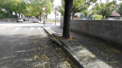 L'Ajuntament de la Seu d'Urgell aprova l'arranjament de voreres del carrer de l'Orri