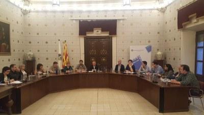L'Ajuntament de la Seu d'Urgell aprova una moció de resposta a la sentència del Tribunal Suprem i per demanar l'amnistia per a les persones preses polítiques catalanes i en defensa de l'autodeterminació