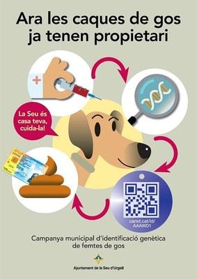 L'Ajuntament de la Seu d'Urgell ja disposa de l'ADN de prop d'un miler de gossos censats al municipi