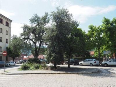 L'Ajuntament de la Seu d'Urgell remodelarà la plaça de les Moreres