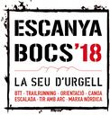 L'Escanyabocs 2018 mantindrà la bona participació de les darreres edicions