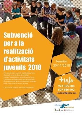 L'Oficina Jove de l'Alt Urgell concedeix una subvenció per a la realització d'activitats juvenils durant l'any 2018