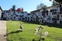 La Seu d'Urgell aprova una nova ordenança del cementiri que inclou urnes biodegradables i un espai de dol perinatal