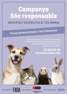 La Seu d'Urgell s'adhereix a la campanya 'Soc responsable' que fomenta la identificació i esterilització d'animals de companyia