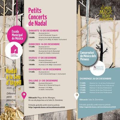 Petits concerts de Nadal de l'Escola Municipal de Música de la Seu d'Urgell i el Conservatori de Música dels Pirineus