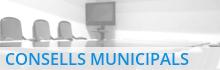 Consells Municipals