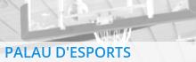 Palau esports