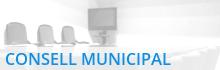 Consell Municipal Solidaritat